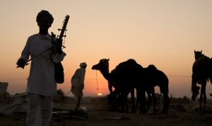 Pushkar camel fair- november destinations in india