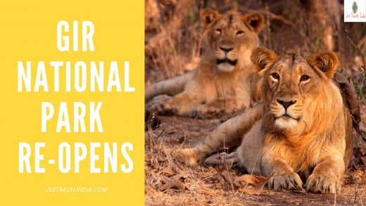 Gir national park reopens